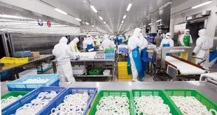Đại An dịch vụ xin cấp giấy chứng nhận vệ sinh an toàn thực phẩm uy tín